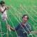 Bangladesh/©CARE 2000/Billy Howard